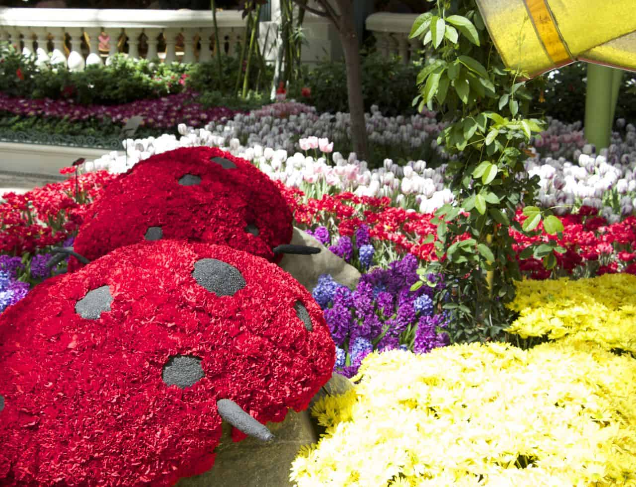 Bellagio Conservatory and Botanical Gardens, Las Vegas