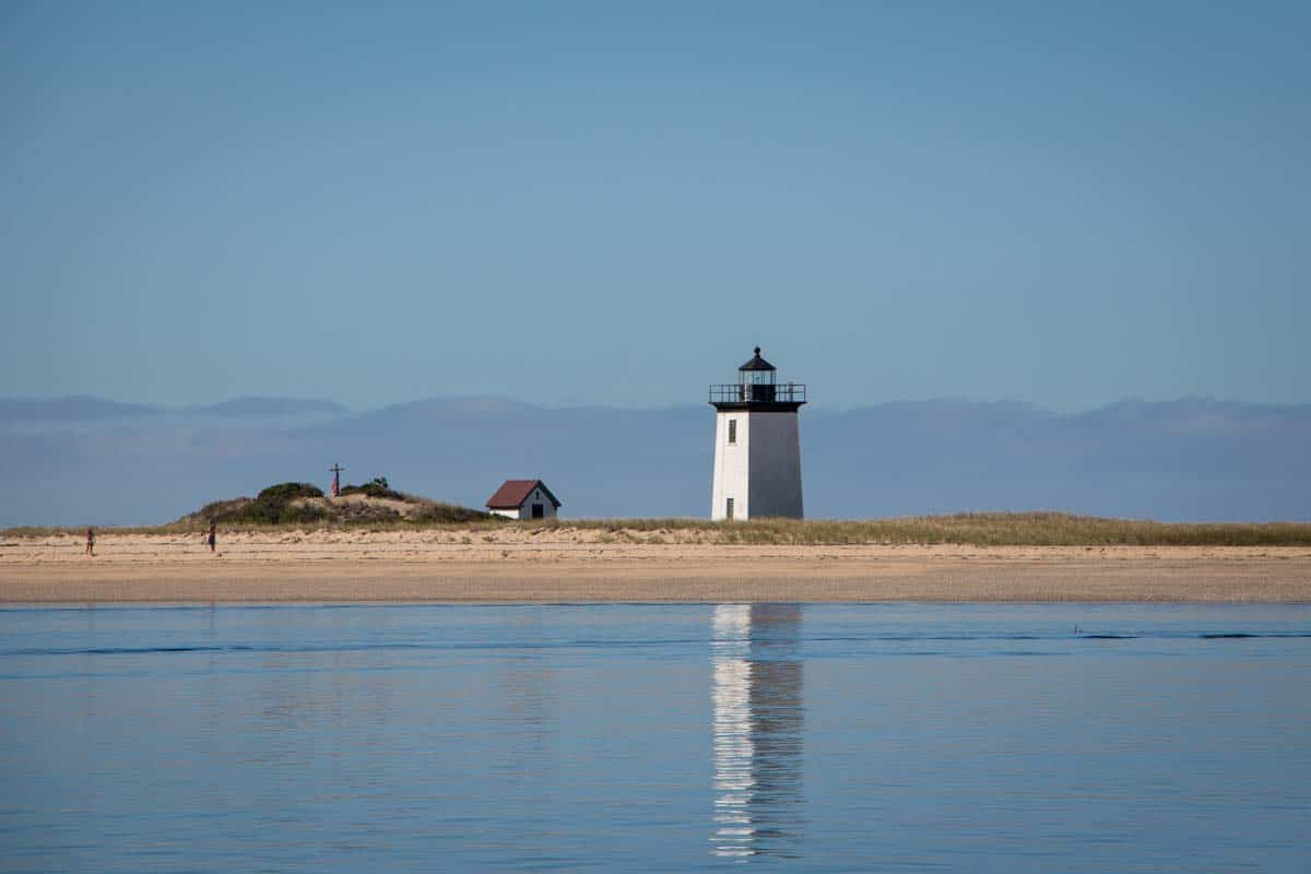 New England hvalsafari fra Cape Cod – Massachusetts, USA