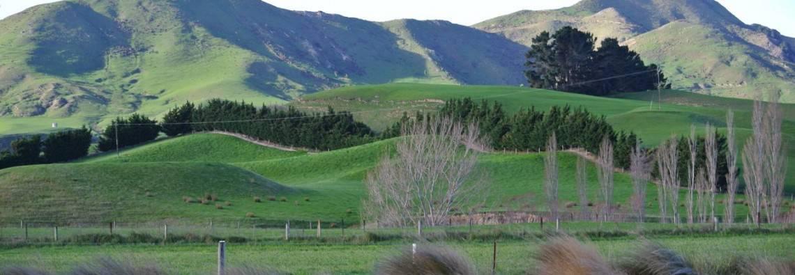 Rejsetanker om New Zealand