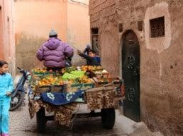 Medinaen den historiske guldalder - Marrakech, Marokko