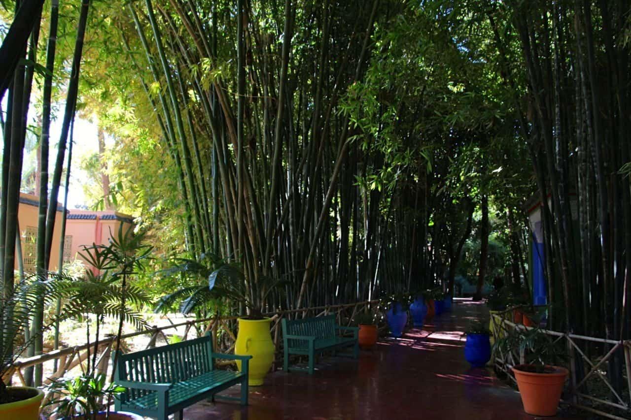 Jardin Majorelle - Marrakesh, Marokko