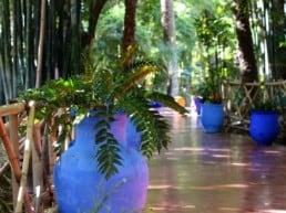 Jardin Majorelle den grønne oase - Marrakech, Marokko