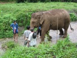 Rejsetanker om Thailand