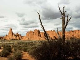 Rejsetanker om Road Trip fra Denver til Las Vegas, USA