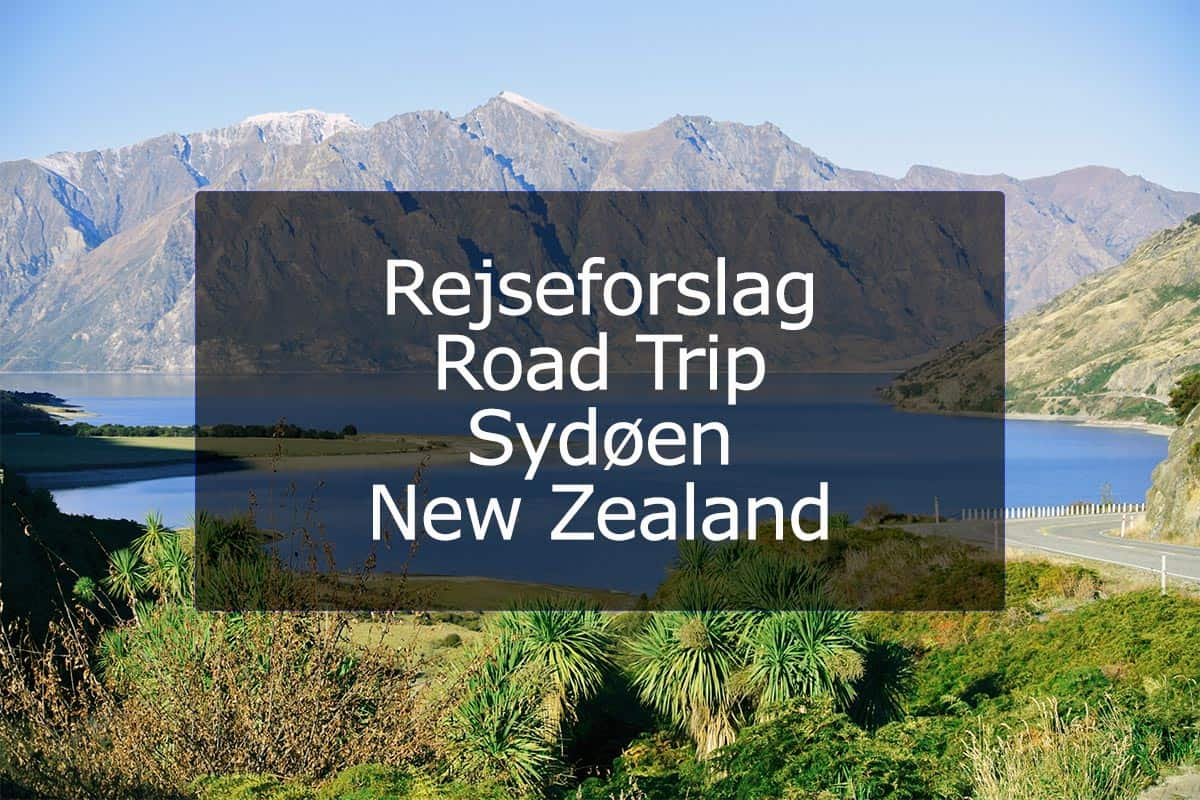 Rejseforslag Road Trip – Sydøen, New Zealand