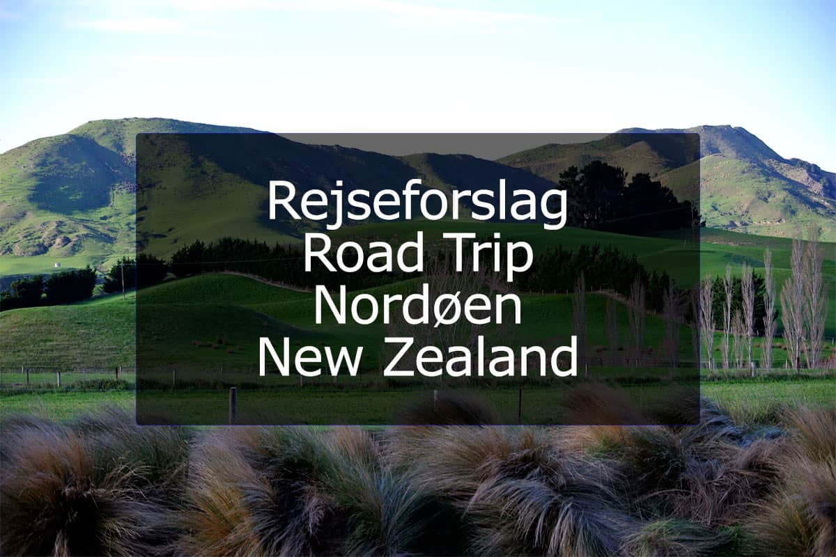 Rejseforslag Road Trip – Nordøen, New Zealand