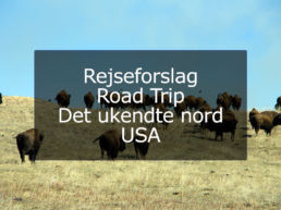 Rejseforslag Road Trip – Det ukendte nord, USA