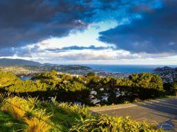 Mount Victoria et smukt udsigtspunkt - Wellington, New Zealand