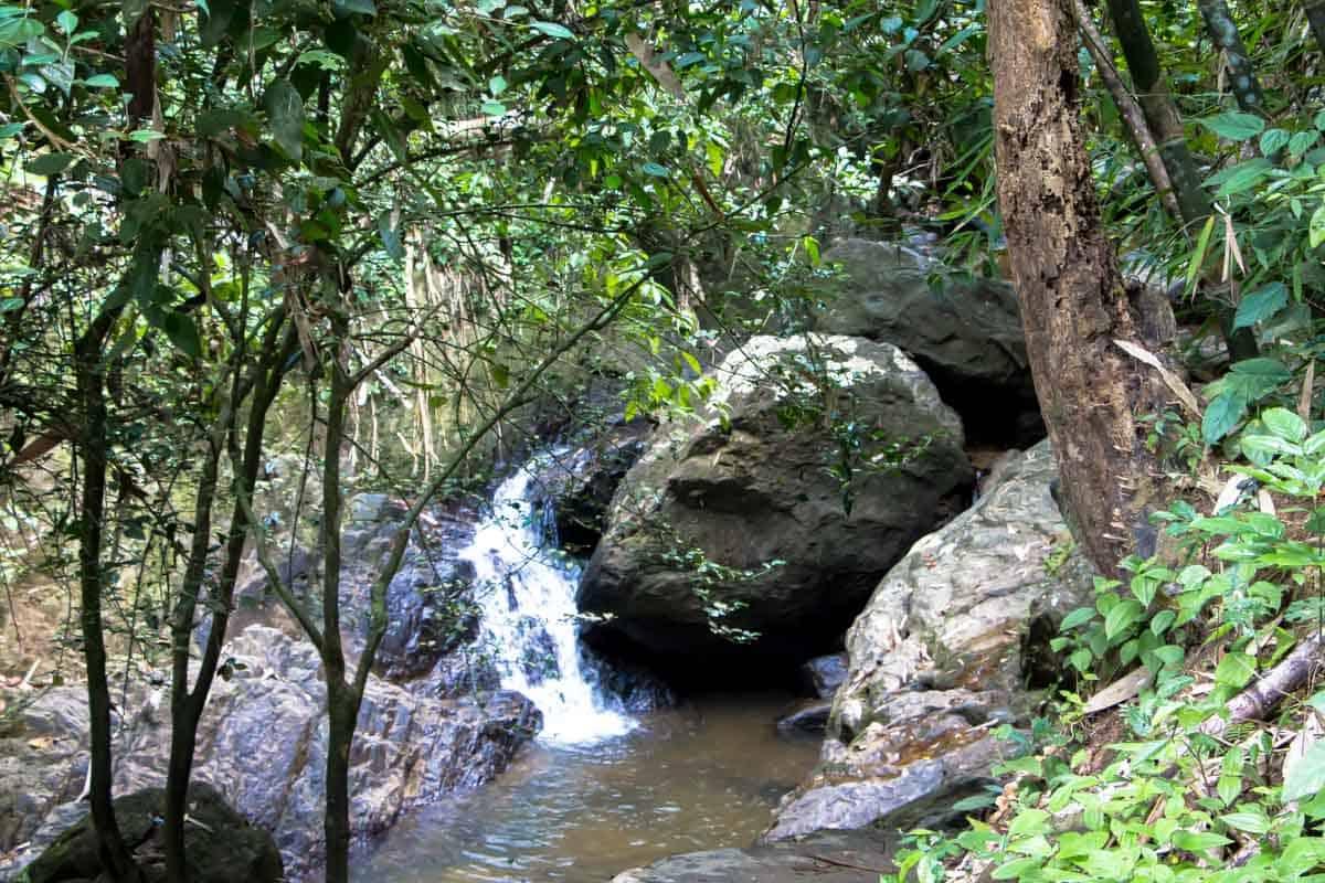 Naturoplevelser på Phuket - Thailand