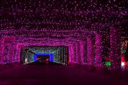 Drive Thru juleudstillingen – Las Vegas, USA