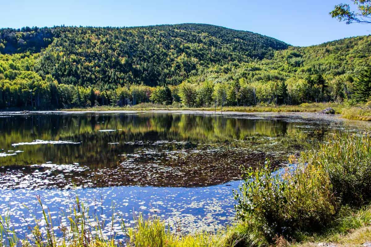 Acadia National Park den eneste nationalpark i New England – Maine, USA