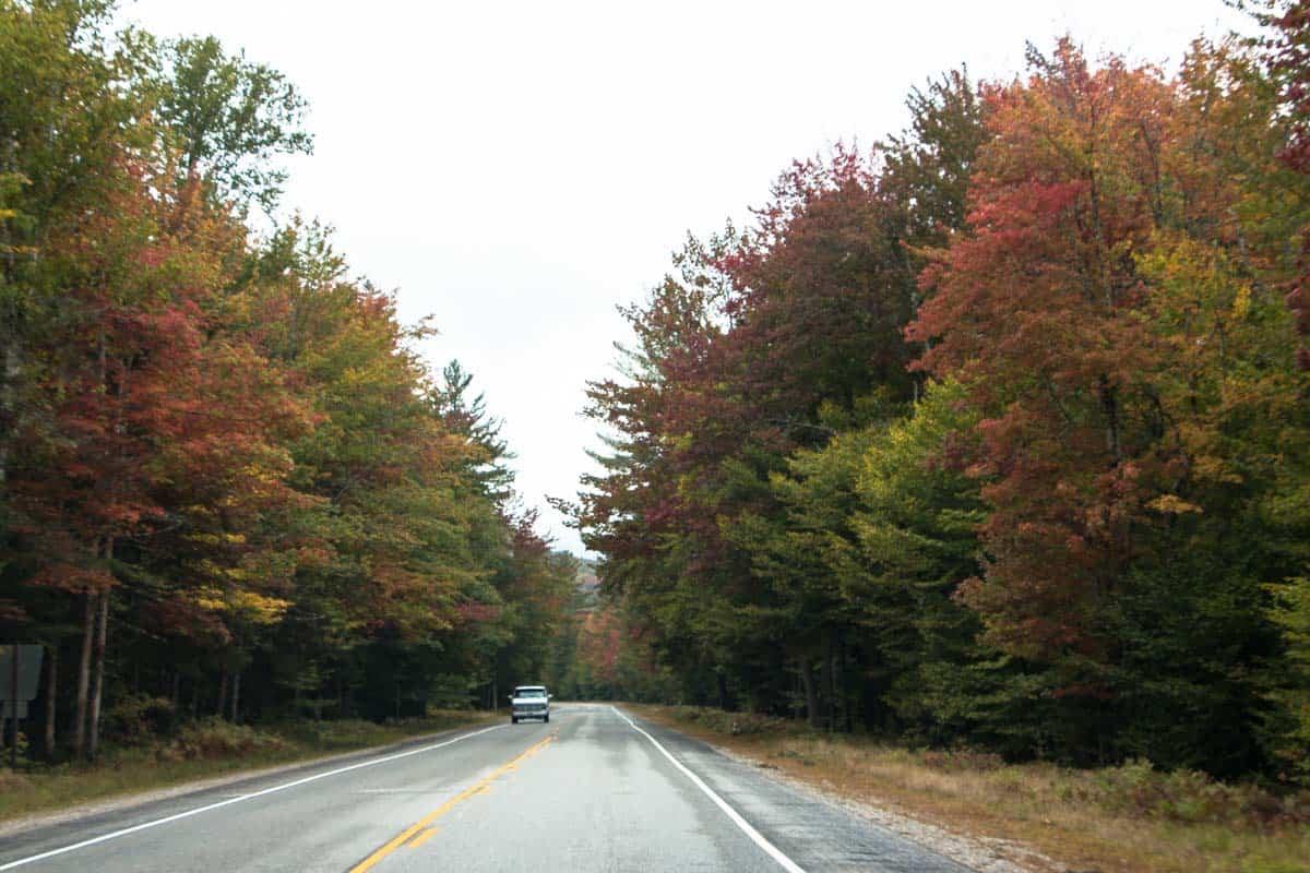 Kancamagus Highway den smukkeste vej i White Mountains – USA