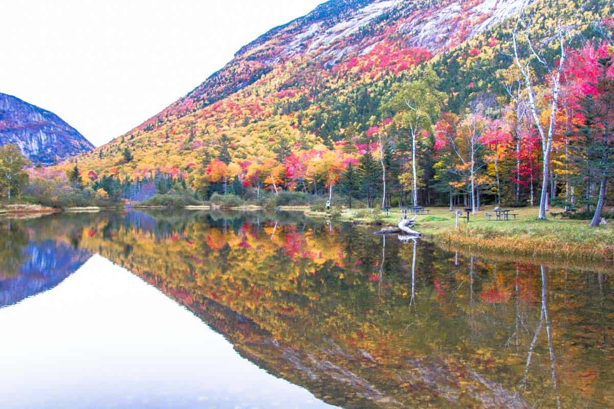 Delt af New Englands Photographers