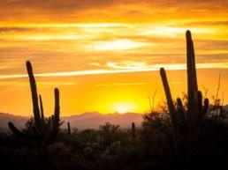 12 Postkort fra Road Trip det sydvestlige USA