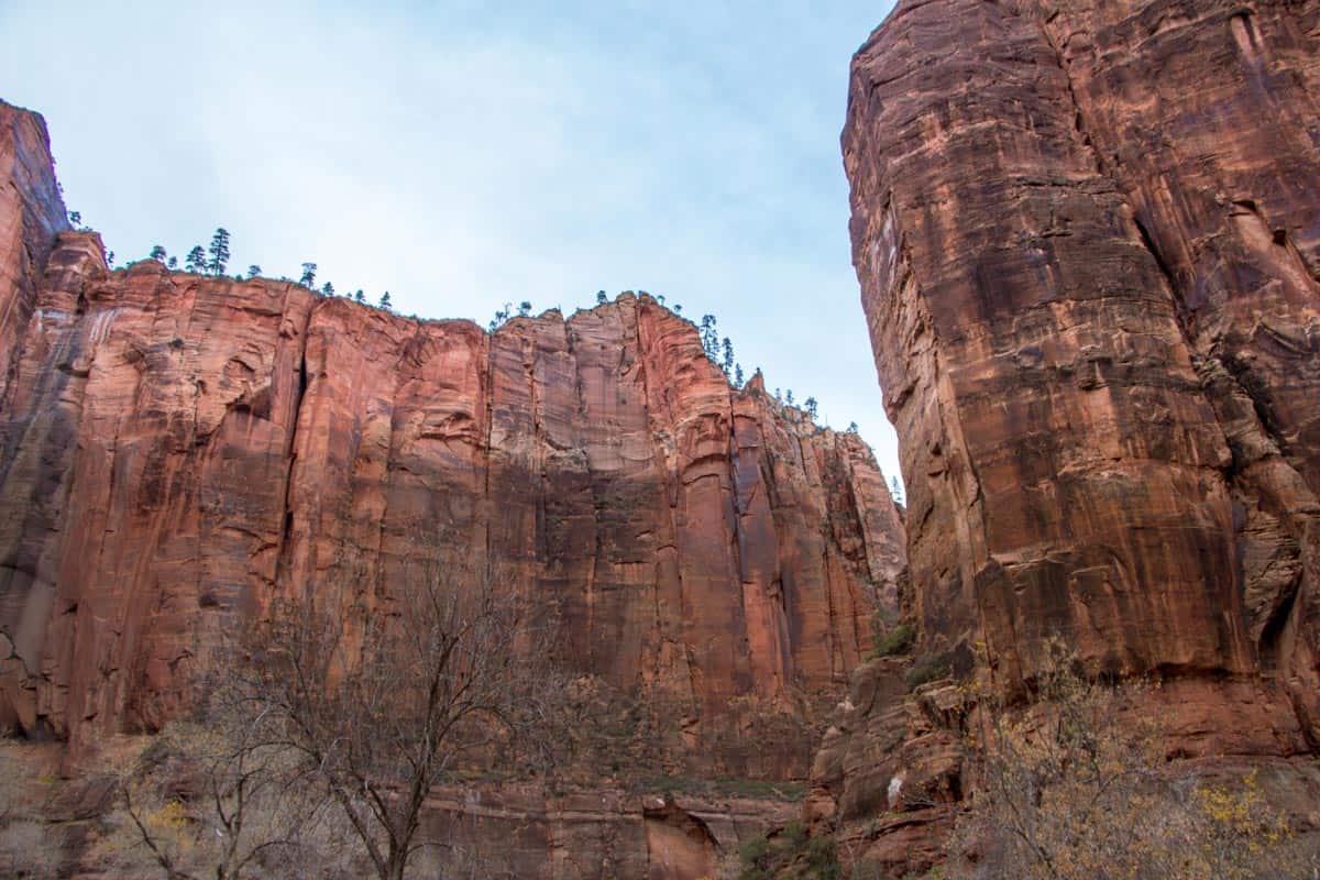 Zion National Park med de tårnhøje klipper - Utah, USA