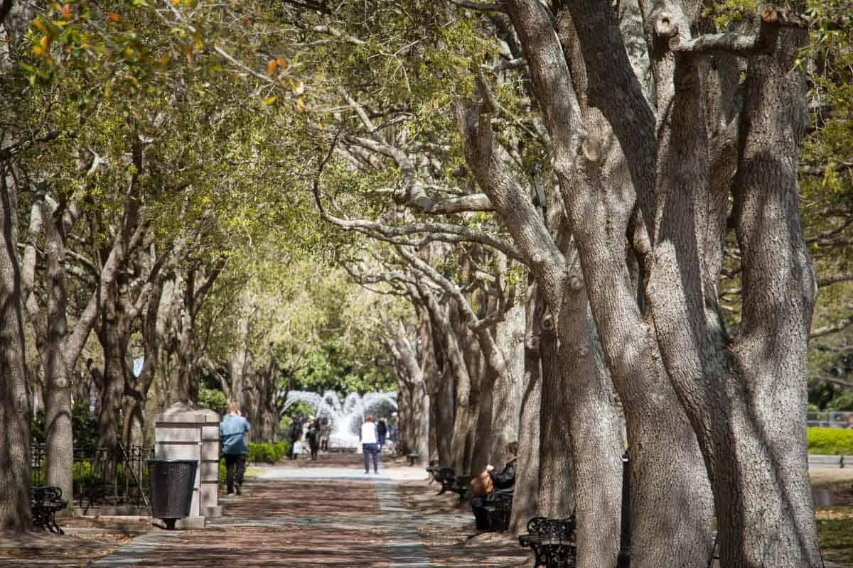 24 timer i Charleston - USA