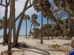 Hunting Island State Park er mangeartede naturscenerier - South Carolina, USA