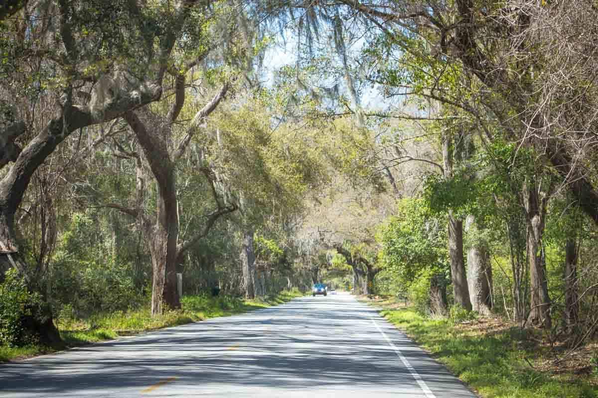Road Trip gennem Lowcountry - South Carolina, USA