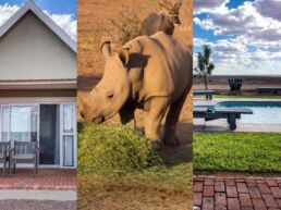 Safari ved Africa Safari Lodge – Mariental, Namibia