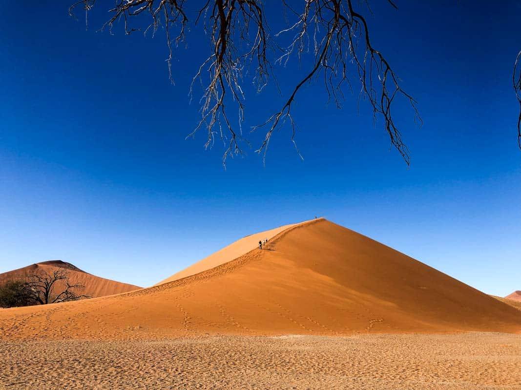 Det vidste du ikke om Namibia