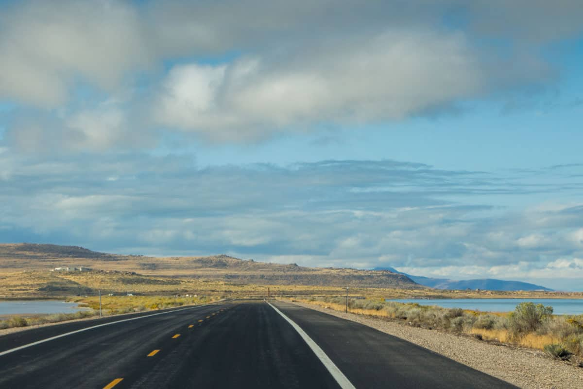Bisonerne på Antelope Island – Utah, USA