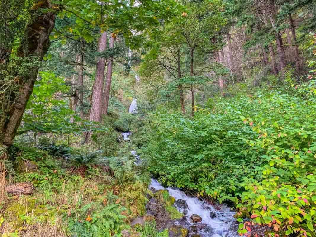 Historiske Columbia River Highway – Oregon, USA