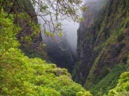 Iao Valley State Park med klippe nålen - Maui, Hawaii
