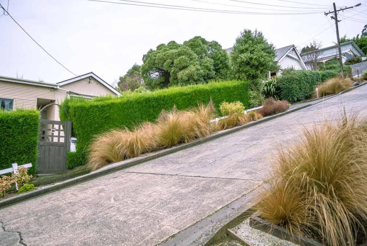 Oplevelser i Dunedin - New Zealand