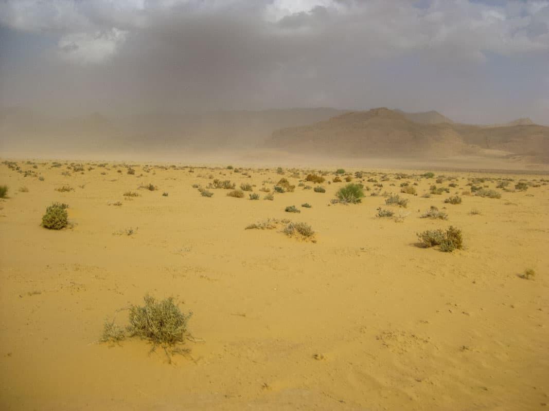 Wadi Rum er en smuk sandørken - Jordan