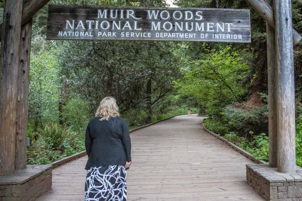Muir Woods National Monument med de enorme Redwood træer – Californien, USA