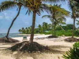 Vores første indtryk af Saint Croix – Amerikanske Jomfruøer