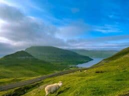 Oplevelser på Suðuroy – Færøerne